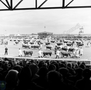 Great Yorkshire Show, 1957